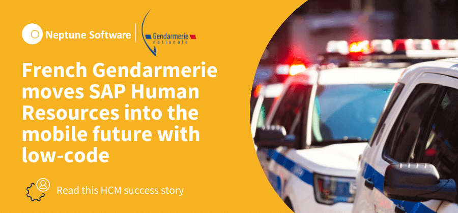 French Gendarmerie Case Study