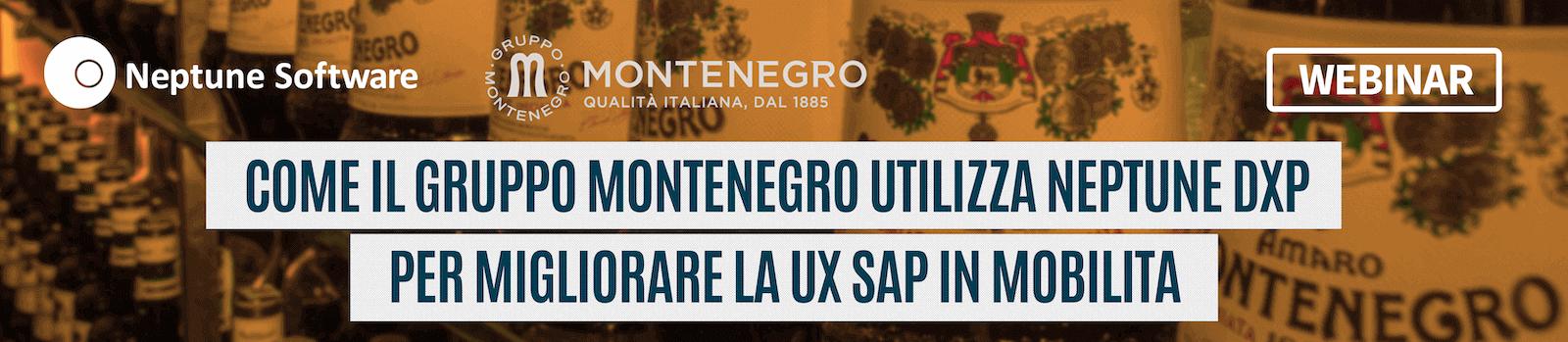Webinar Montenegro Italian